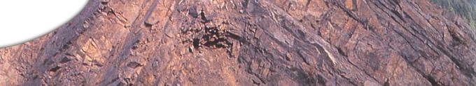 seitenkopfbild-0012 image