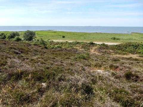 Abb. 3: Die Duhner Heide grenzt direkt an die Nordsee